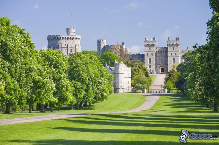 Windsor Castle, trädgård, park, grönska