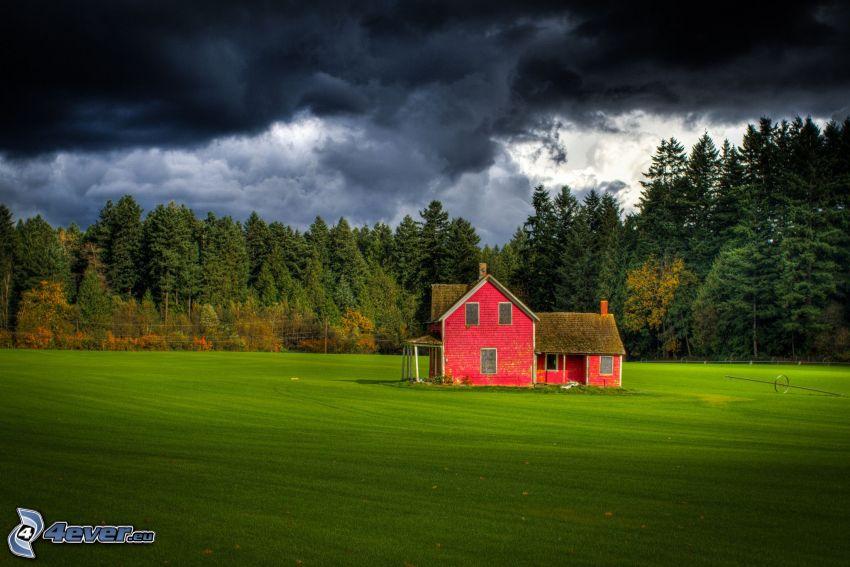 hus, äng, skog, mörk himmel