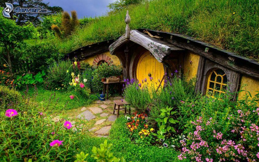 hus, blommor