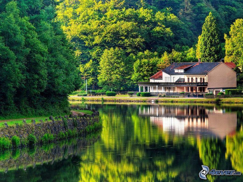 hus, sjö, träd