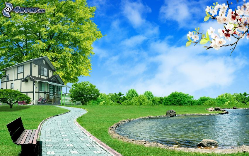 hus, trottoar, bänk, sjö