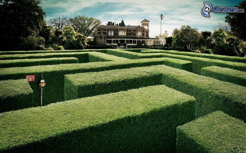 labyrint, häck, hus