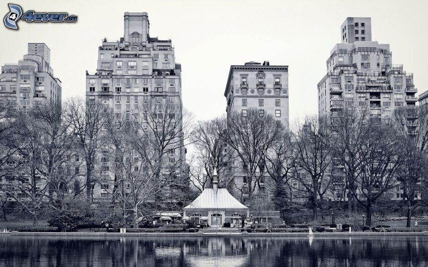 lägenheter, flod, träd, svartvitt foto