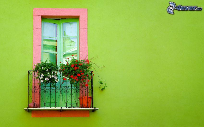 balkong, blommor