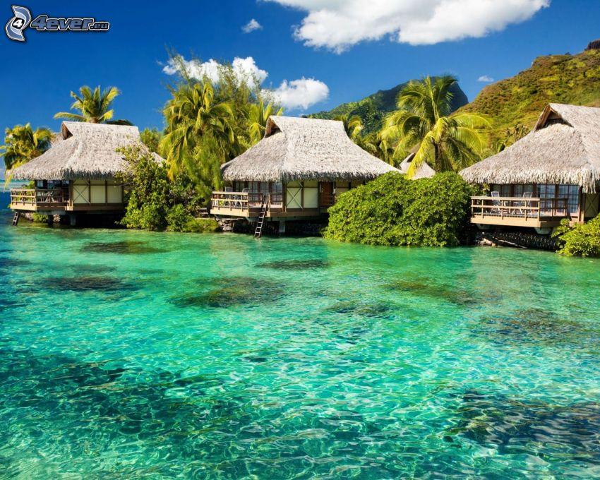 semesterstugor vid havet, azurblå hav, palmer