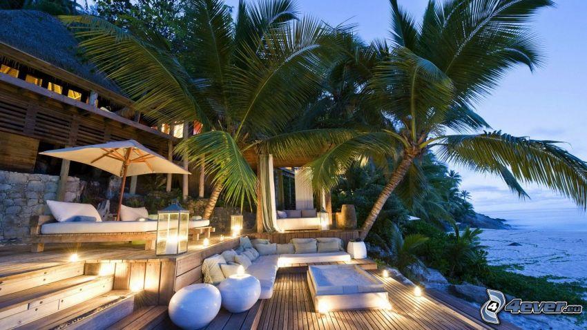 terrass, lyxigt hus, palmer
