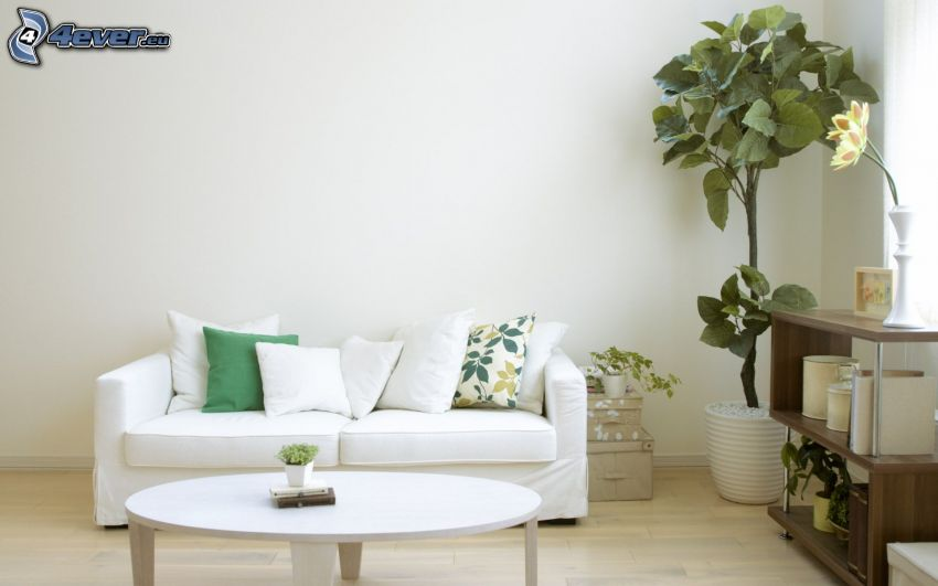 vardagsrum, säte, blomma