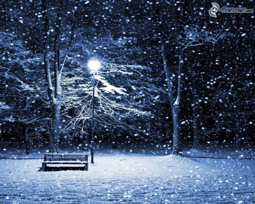bänk i park, snötäckt bänk, ljus, snö, träd