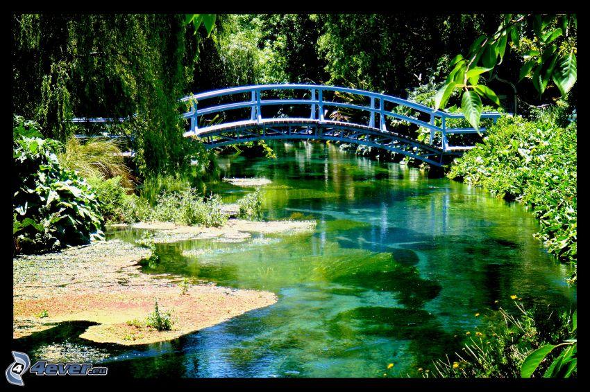 gångbro, flod, grönska