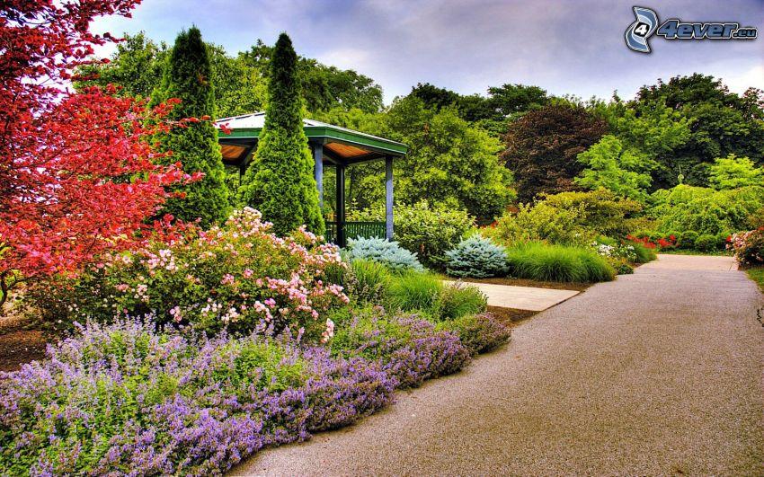 park, grönska, altan, trottoar