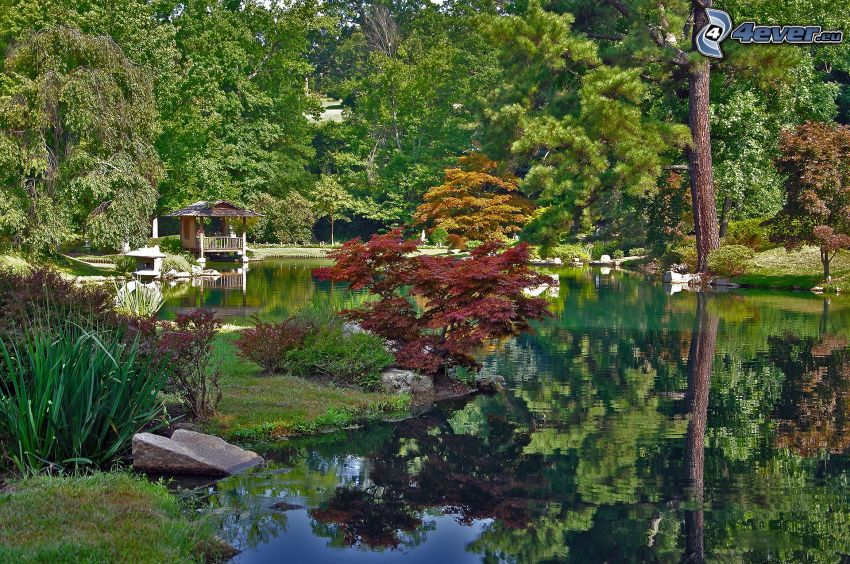 park, sjö, altan, grönska