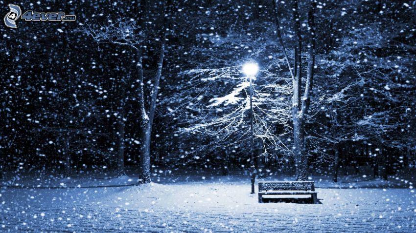 snöig park, bänk, gatlyktor, snöfall