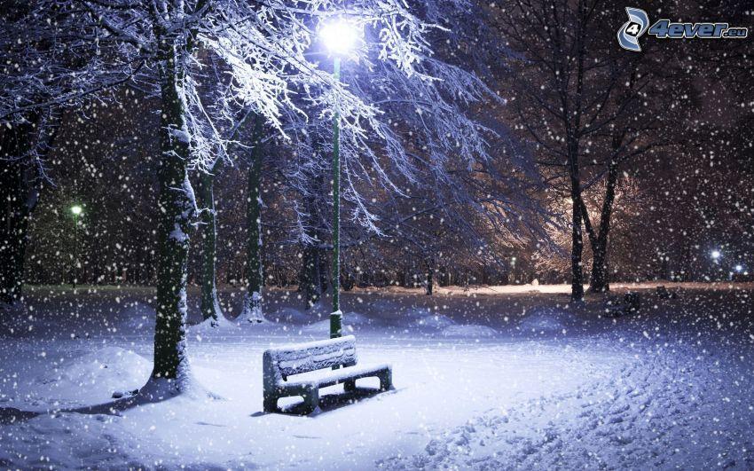 snötäckt bänk, gatlyktor, snöklädda träd, snöfall