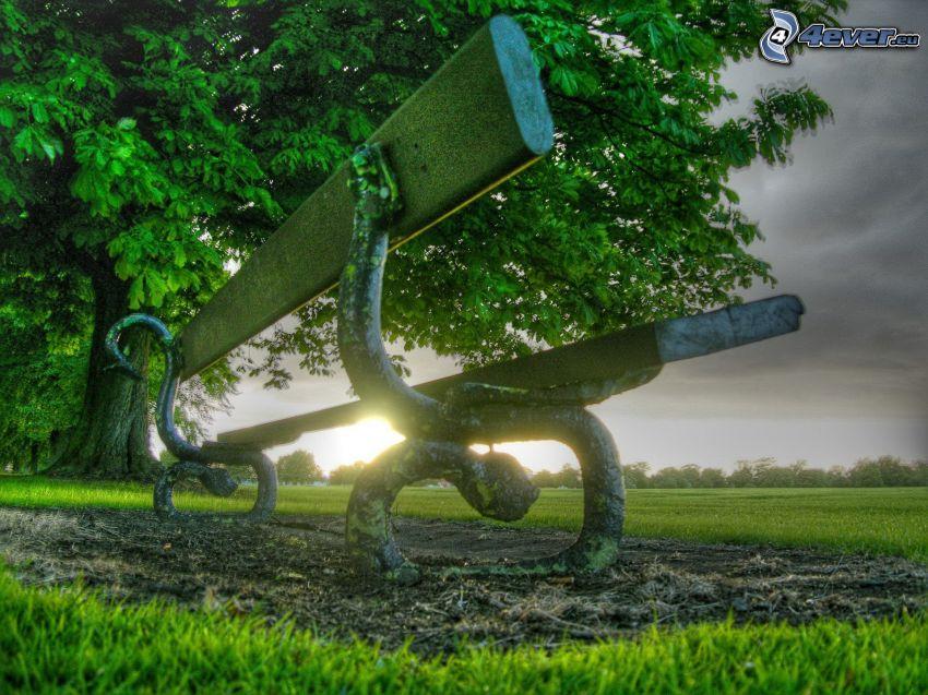 solnedgång bakom bänk