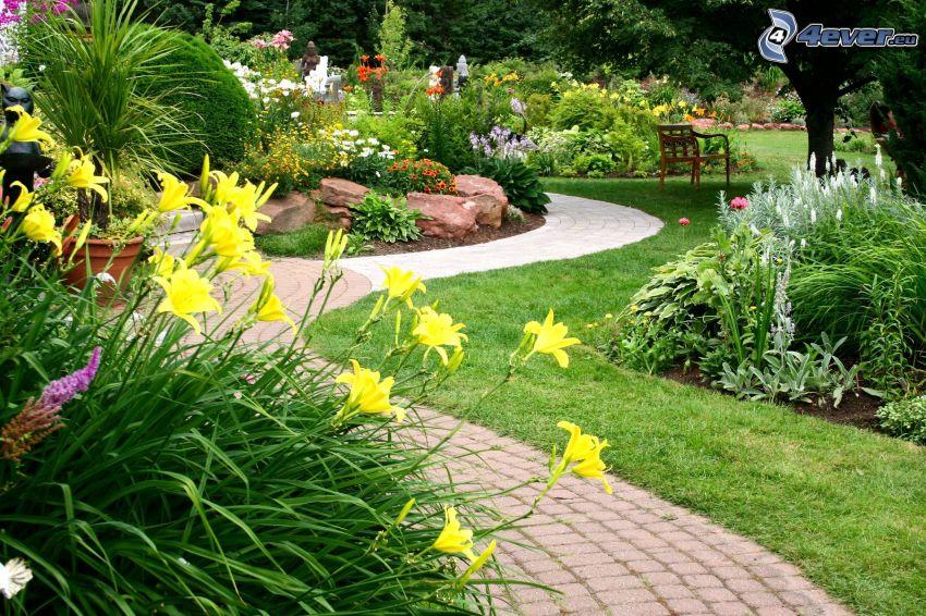 trädgård, trottoar