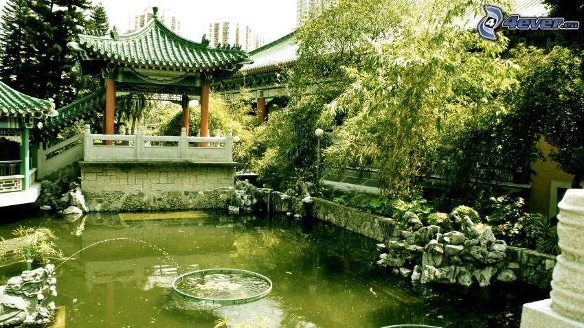 sjö, grönska, Kina