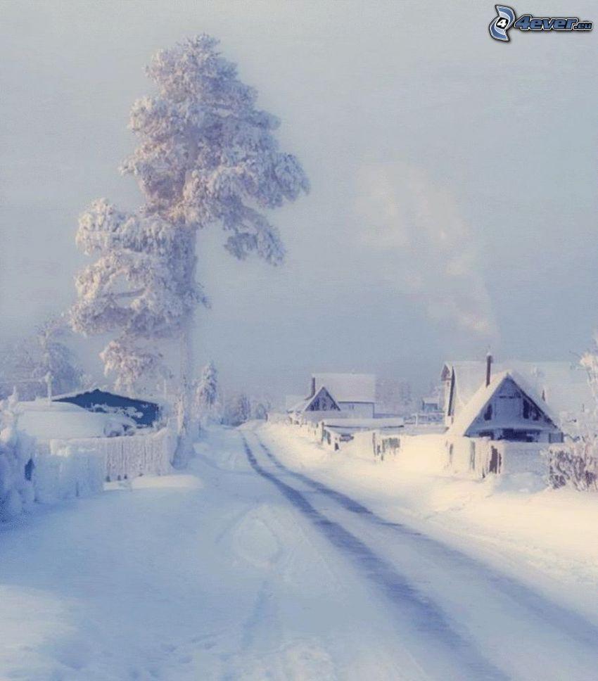 snöig gata, snöigt träd, snöig by