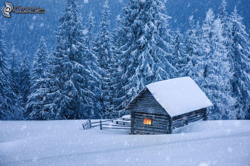 snöig stuga, snöfall, snöklädda träd