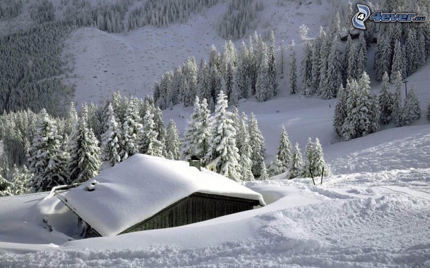 snöig stuga, snöigt landskap