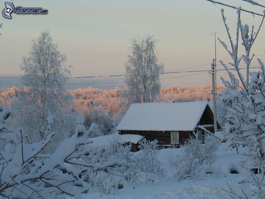 snöig stuga, snöklädda träd