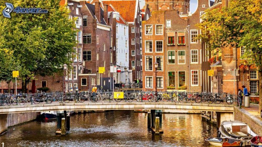 Amsterdam, kanal, bro, cyklar, hus