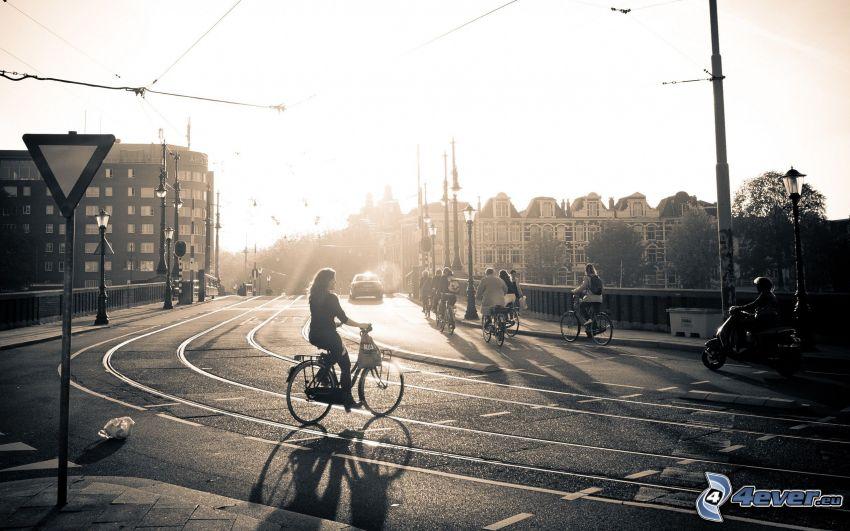 Amsterdam, väg, cyklist