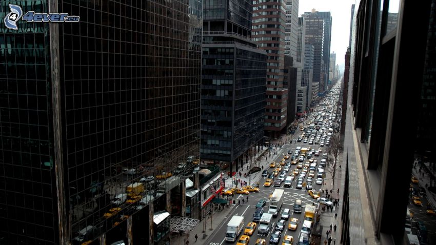 New York, gata