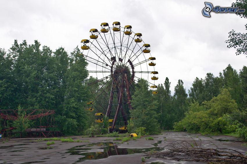 pariserhjul, träd, Pripyat