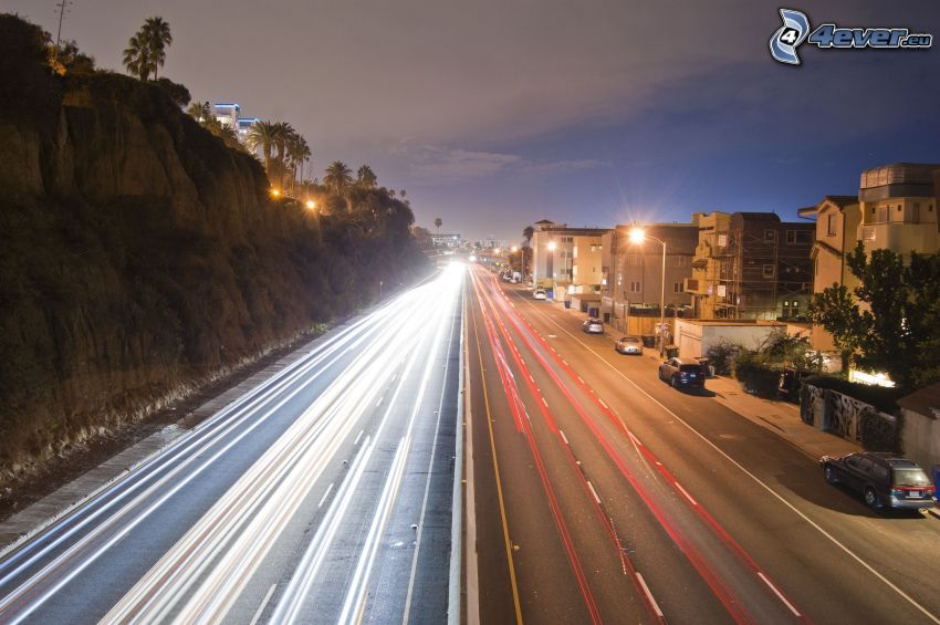 Santa Monica, gata, ljus, kvällsstad