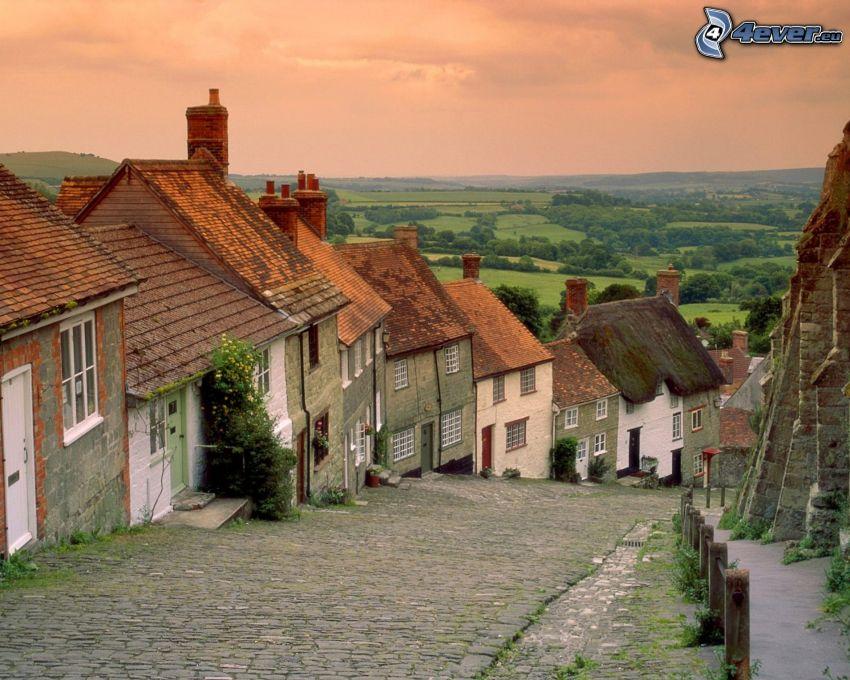 Shaftesbury, by, skogar och ängar