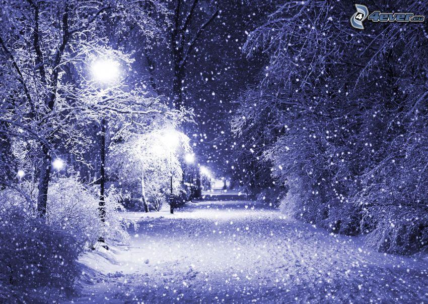 snöig väg, gatlyktor, snöklädda träd, snöfall