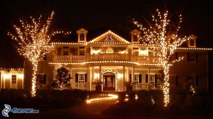 upplyst hus, belysta träd, natt