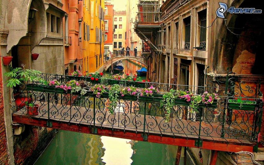 Venedig, gångbro, blommor