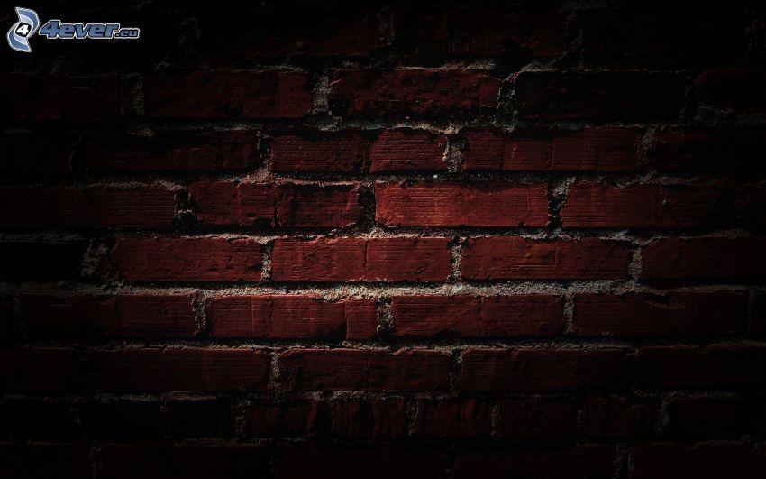 tegelvägg, mur