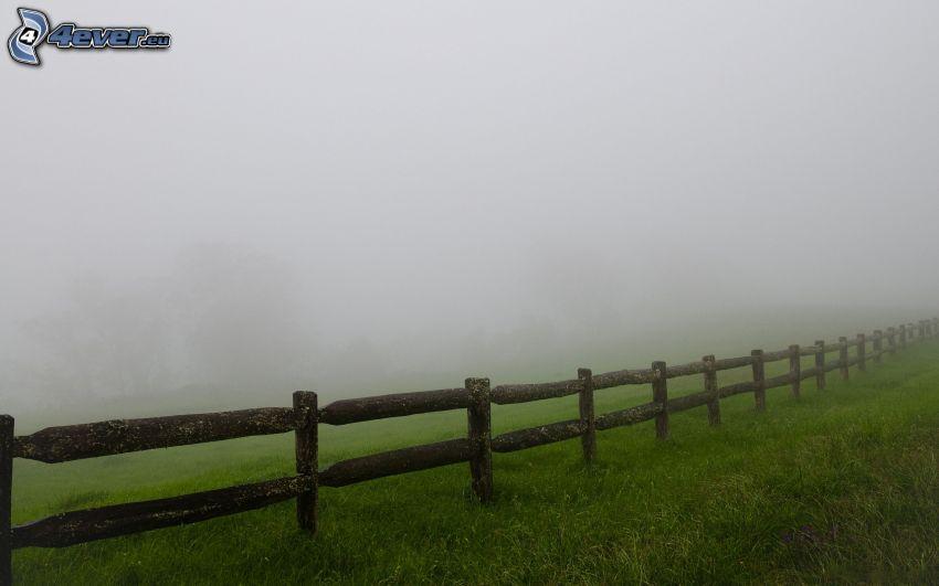 trästaket, dimma, gräs