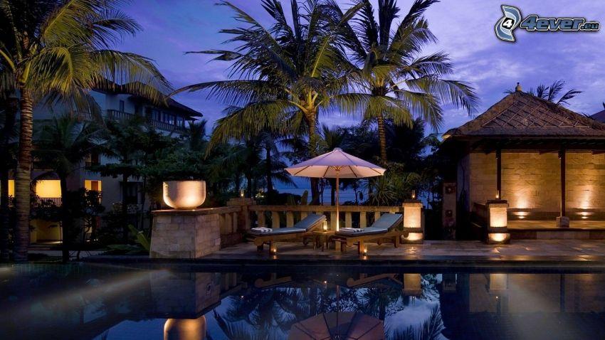villa, bassäng, palmer, solstolar, parasoll, kväll, belysning