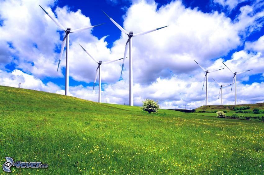 vindkraftsverk, äng, moln