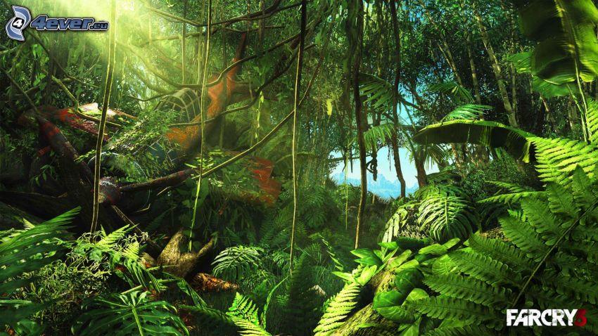 Far Cry 3, djungel