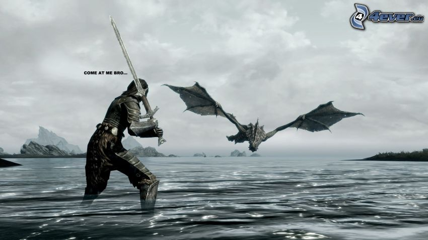 The Elder Scrolls Skyrim, kämpare, flygande drake