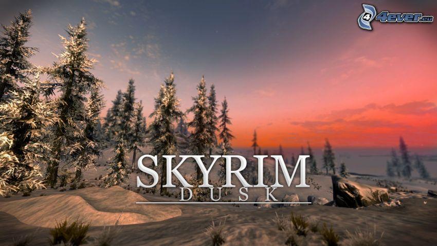 The Elder Scrolls Skyrim, snöigt landskap