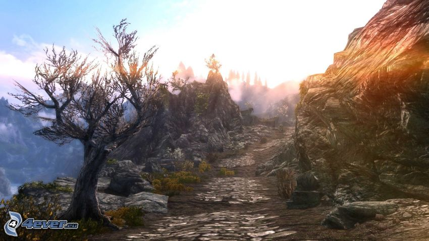 The Elder Scrolls Skyrim, trottoar