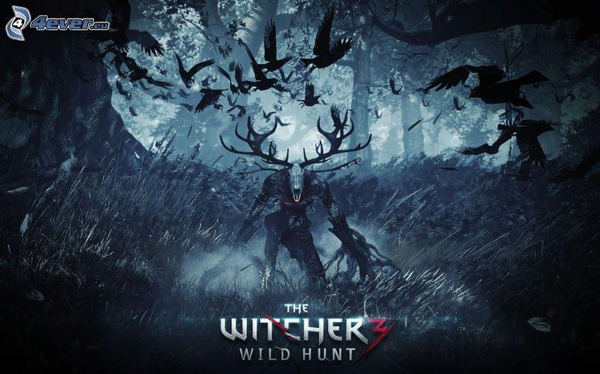 The Witcher, skog, mörker, korpar