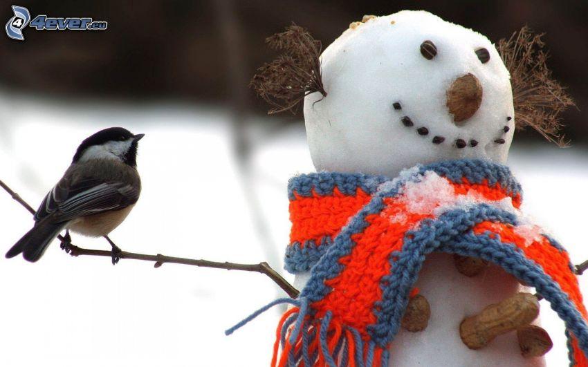 fågel, snögubbe, halsduk