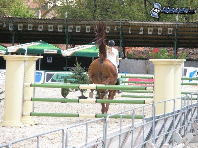 hästparkur