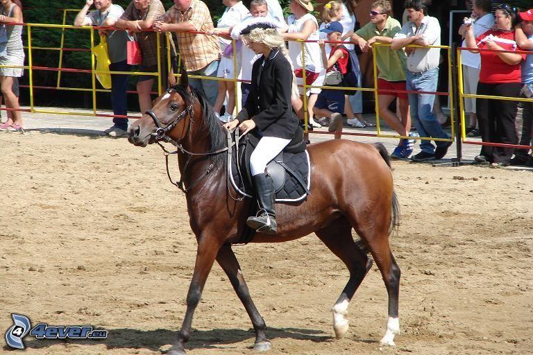 kvinna till häst