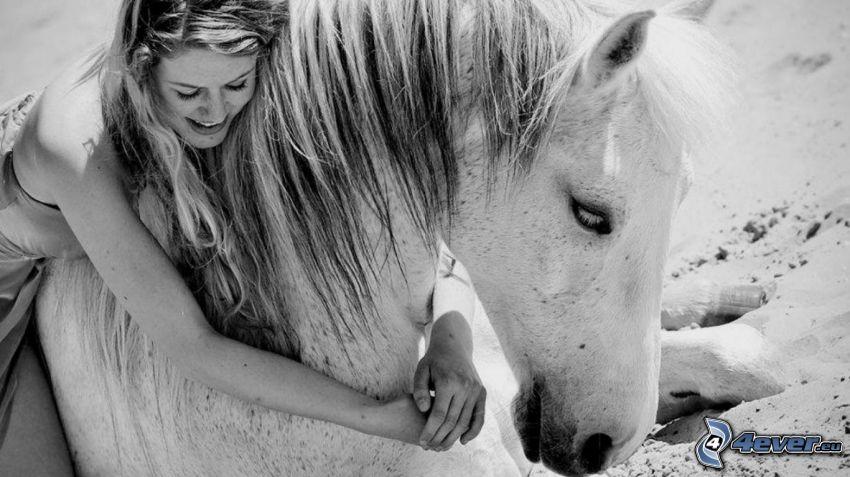vit häst, kvinna, svart och vitt