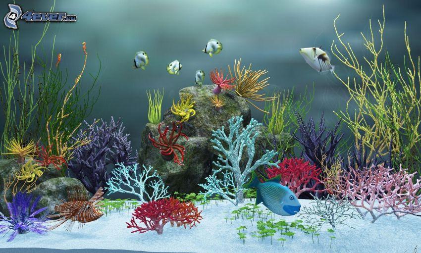 akvarium, fiskar, koraller, växter
