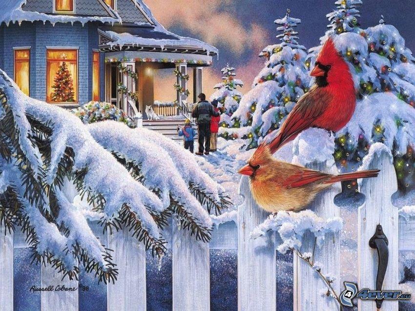 jul, vinter, snöklädda träd, fåglar, trästaket