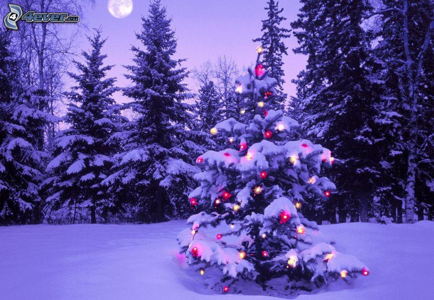 julgran, snöig skog, måne