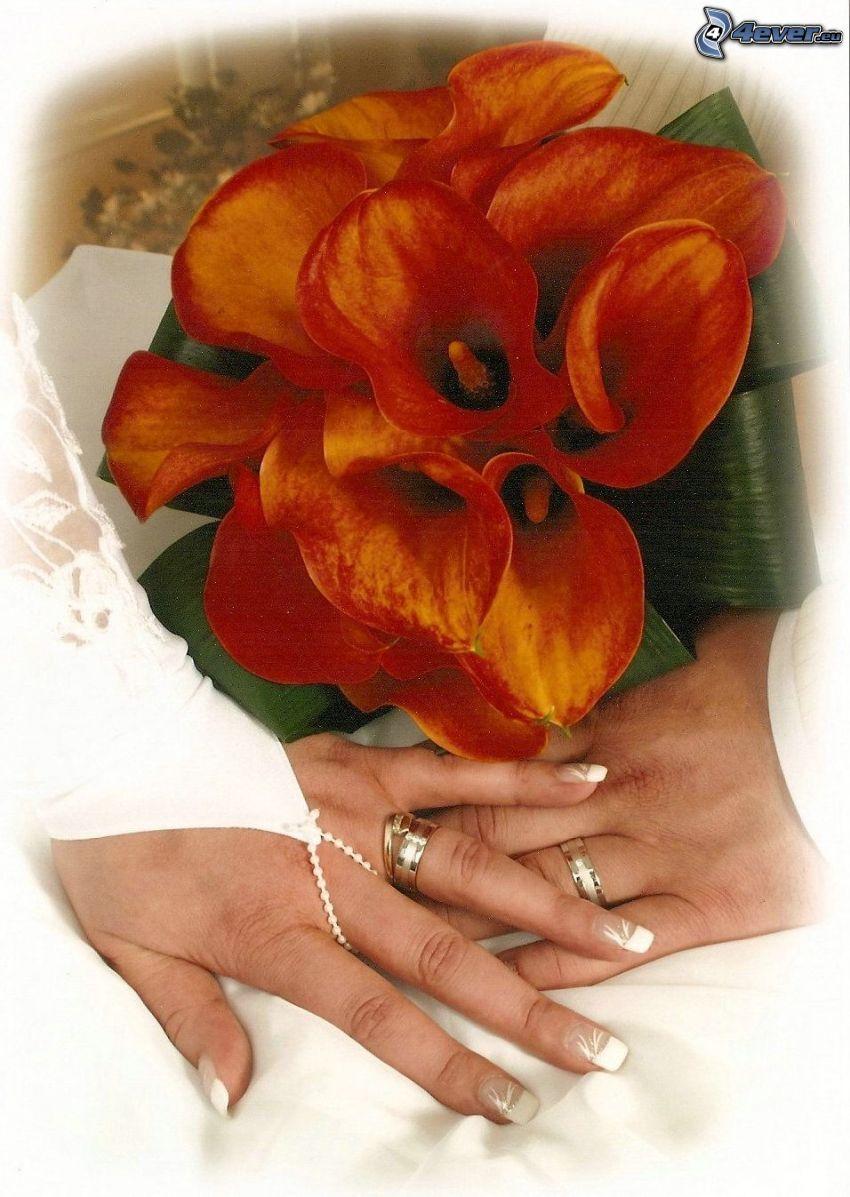 bröllop, bukett, ringar
